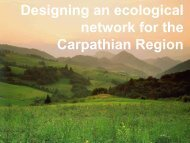 Carpathian Ecological Network – first analyses