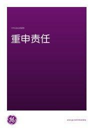 2009年企业公民报告