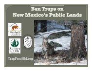 See the coalition TrapBanNM.org presentation. - WildEarth Guardians