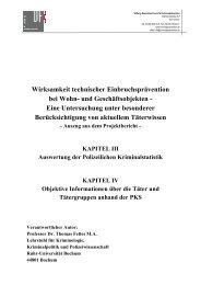 Auswertung der Polizeilichen Kriminalstatistik - Deutsches Forum für ...