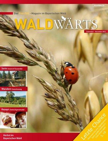 Letzte Chance - waldwaerts-online