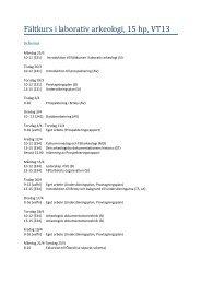 Fältkurs i laborativ arkeologi VT2013
