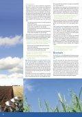 Mestgazet 6 - Bemestingsnormen 2008 - Vlaamse Landmaatschappij - Page 6