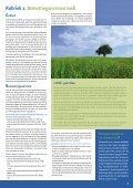 Mestgazet 6 - Bemestingsnormen 2008 - Vlaamse Landmaatschappij - Page 7