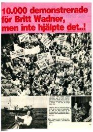 SE 1981
