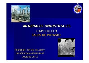 MINERALES INDUSTRIALES CAPITULO 9