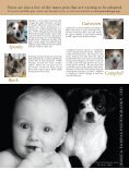 2007-spring - PAWS Chicago - Page 4