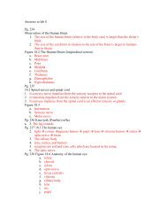 Answers to lab 8 Pg. 234 Observation of the Human Brain 1. The ...