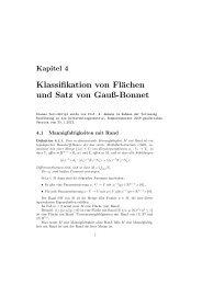 Klassifikation von Flächen und Satz von Gauß-Bonnet - Mathematik