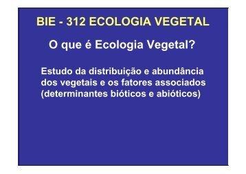 Vegetação na escala global e fatores determinantes