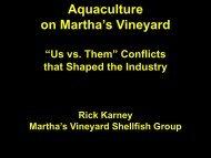Martha's Vineyard Shellfish Company, Massachusetts