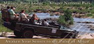 Awaken Your Senses to the Pulse of Africa - Extraordinary