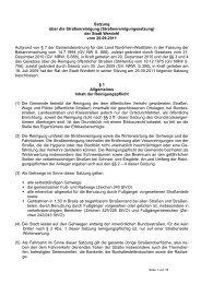 Satzung über die Straßenreinigung - Werdohl