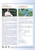 Champ_2004_2F - Champignon Suisse - Page 2