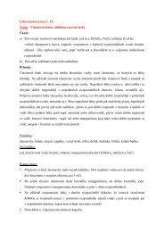 Laboratorní práce č. 10 Téma: Vlastnosti látek ... - Chemie na GJO