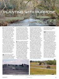 Planting with Purpose - Forestry Journal