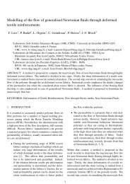 Modelling of the flow of generalised Newtonian fluids through ...