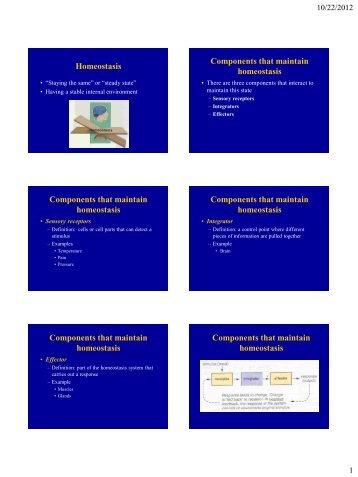 Homeostasis PowerPoint presentation