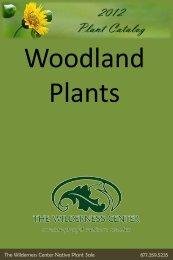 Woodland Plants - The Wilderness Center