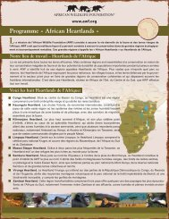Programme « African Heartlands » - African Wildlife Foundation