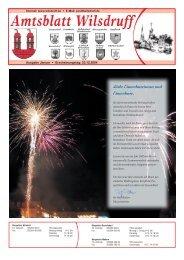 Ausgabe Januar 2005 - Stadt Wilsdruff