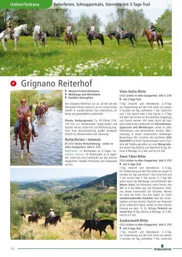 pdf-Katalogseite - Pferd & Reiter