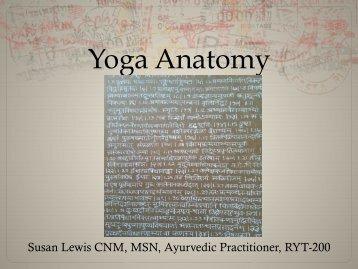 Yoga Anatomy - Curvy Yoga