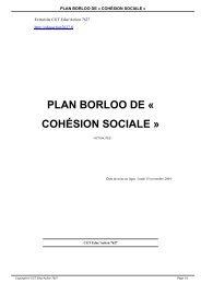 PLAN BORLOO DE « COHÉSION SOCIALE »