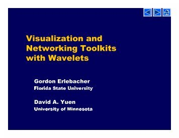 Visualization and Networking Toolkits with Wavelets - Quakes