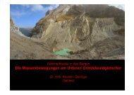 Die Massenbewegungen am Unteren Grindelwaldgletscher - CHy