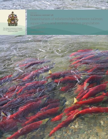 Examination of relationships between salmon aquaculture and ...