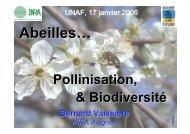 Abeilles... Pollinisation et Biodiversité
