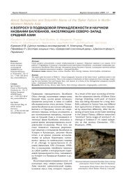 About Subspecies and Scientific Name of the Saker Falcon in North ...