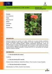 Pelargonium inquinans (L.) L´Hér. ex Aiton ... - Interreg Bionatura