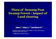 Flora of Sessang Peat Swamp Forest : Impact of Land ... - SPLU.nl