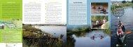 Exeter Canoe Loops - Canoe England