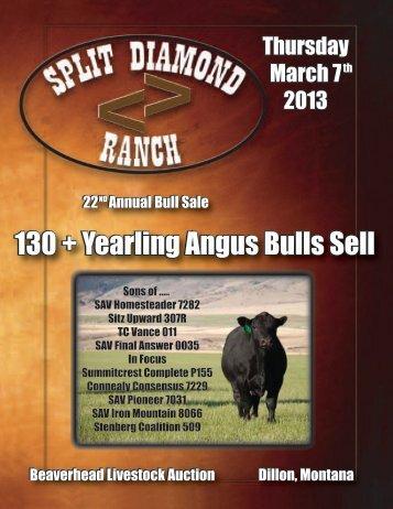 22nd Annual Bull Sale (PDF: 5.4 MB) - Ballyhoo Printing