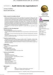 CFA223 - Audit interne des organisations II - Cnam