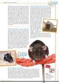 Freunde Magazin Sommer 2013 S. 35 - Alles für Tiere - Page 2