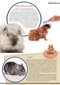 Freunde Magazin Sommer 2013 S. 35 - Alles für Tiere - Page 5