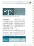Gesamtbeitrag downloaden - Zahnheilkunde.de - Seite 2