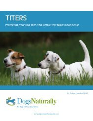 Titer's - Greater Derry Humane Society