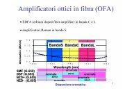 Amplificatori ottici in fibra (OFA)