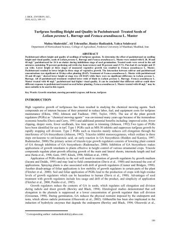 Treated Seeds of Lolium perenne L. Barrage and Festuca