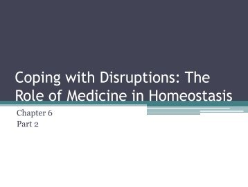 Coping with Disruptions: The Role of Medicine in Homeostasis