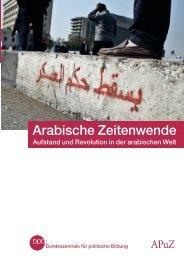 Arabische Zeitenwende - Aufstand und Revolution in der arabischen