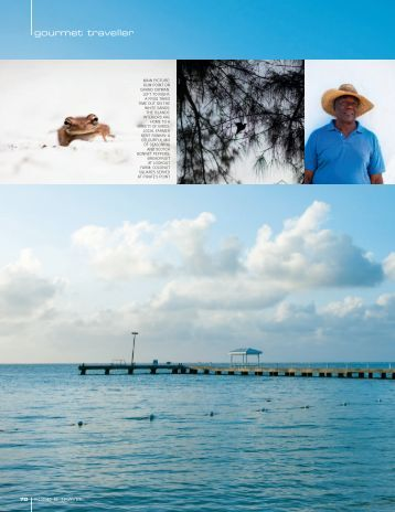gourmet traveller - Cayman Islands