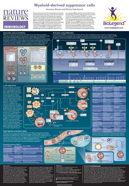 Myeloid-derived suppressor cells