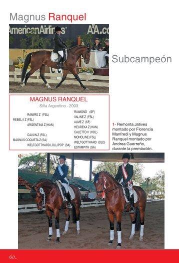 Silla Argentino - Asociación Argentina de Fomento Equino