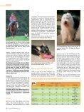 Neues zum Mdr1-Defekt - Seite 3